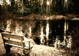 Bench by Frozen Pond, Stylized