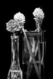 Bouquet Ends