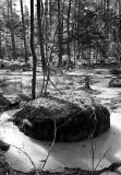 Rock and Frozen Marsh
