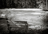 Bench Facing Frozen Pond
