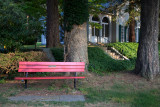 Grandma Curtin's Bench