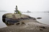 Receding Tide, Blue Hill Harbor