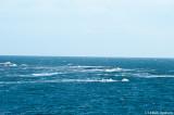 Då passagen över kosterfjorden skulle ske i 17 m/s & de hårda vindarna skulle fortsätta några dagar....