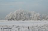 Bourgoyen December 2007