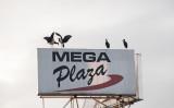 Mega Plaza, Kisumu