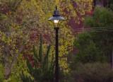 Wandong Light