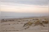 Nieuwpoort - strand