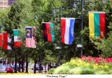 124  Parkway Flags.JPG