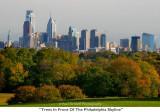 193  Trees In Front Of The Philadelphia Skyline.JPG