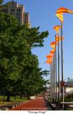 256  Orange Flags.jpg