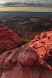 Mesa Arch View 2007