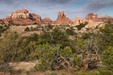Elephant Rock - Needles District