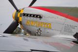 North American P-51D Mustang Gunfighter