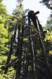 Burned Rail Bridge