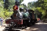 Roaring Camp Engine