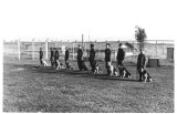 Handlers and Dogs in Training area-4