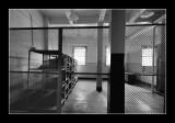 Alcatraz EPO_3695.jpg