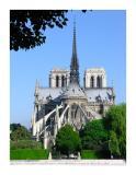 Notre Dame de Paris. 6