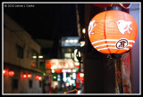 A Bird Lantern and Rundown Street