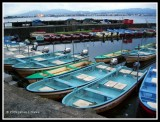Little Boats For Hire