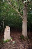 A Szûzanya-kegyhely és a fa - The shrine of the Blessed Virgin and the tree.jpg