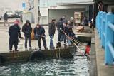 Fishermen ribièi_MG_2952-11.jpg
