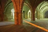 Vaults of Palazzo Vescovile_MG_6492-11.jpg