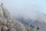 Winter zima_MG_2801-111.jpg