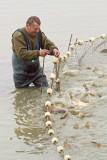 Fisherman ribiè_MG_1525-11.jpg