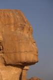 Sphinx sfinga_MG_9809-1.jpg
