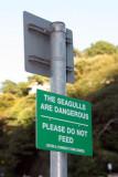 Danger birds