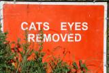 Cats eyes!