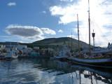 Islande 2011 862 Medium.JPG