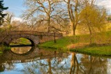 Bridge and reflection, Minterne Magna