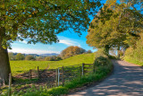 Country road near Beaminster, Dorset