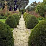Tintinhull Gardens, Somerset (3064)