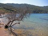 La  Plage du palud à Port-Cros