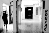 137412833.nFq8thlL.pb_Zadar_Rajae_chasse.jpg