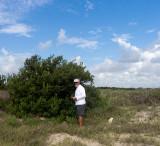 Dr. Ramirez and large black mangrove.jpg