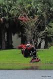 lawnmower rescue