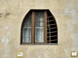 Window with slats