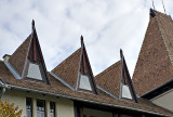 Neo-transylvanian windows