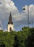 Romanian Orthodox Church (Catedrala San'nicoara)