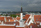 Red roofs of Tallinn