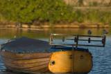 Tärnor och träbåt i Mönsterås