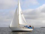 Amigo 27 innan avmastning 2007