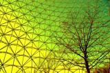 Biosphère.