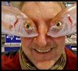 fish 2.jpg