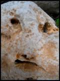stoneface2 copy.jpg