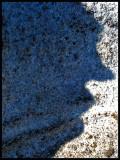 shadow  profile copy_edited-1.jpg